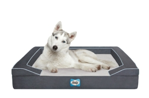 superzoo-sealy-dog-bed
