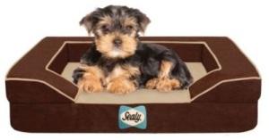 sealy-bella-dog-bed-1 - pet bed